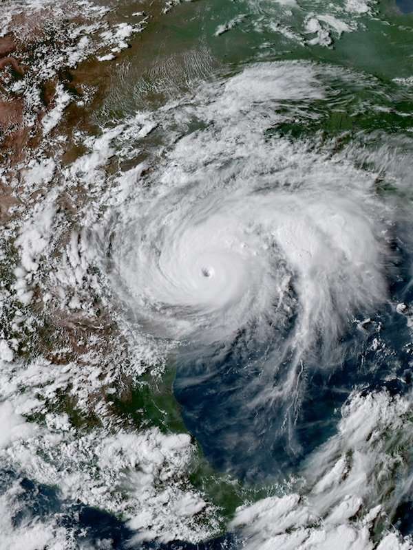 Special Edition of Newsletter RE: Hurricane Harvey